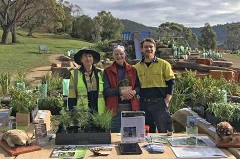 Bushcare events and activities