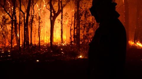 bushfire-NSW-blue-mountains-2013[1].jpg