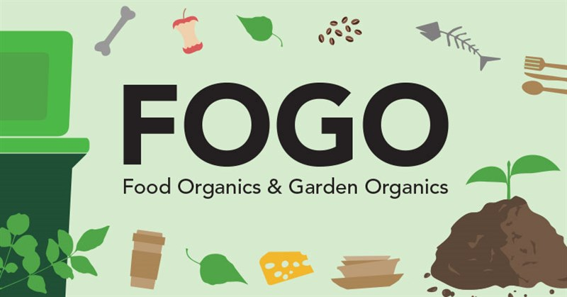 Illustrated FOGO items banner